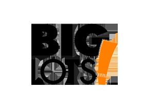 companies-big-lots